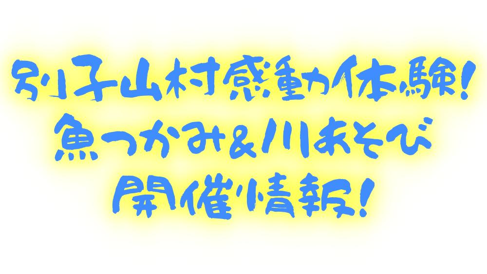 別子山村感動体験!魚つかみ&川あそびを紹介!