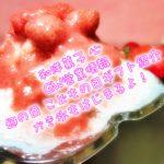 和洋菓子心 2019年5月 GW営業予定と商品紹介 かき氷始まります!