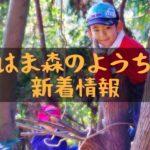 自然保育団体「にいはま森のようちえん」新着情報!